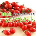 【ふるさと納税】ミニトマトセット【 キャロルセブン・アイコ】2kg 和歌山産...