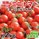 【ふるさと納税】完熟 ミニトマト(キャロルセブン)約2kg ...