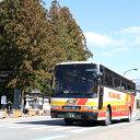 【ふるさと納税】定期観光バス乗車券 熊野三山めぐりコース(お弁当付) 大人1名様