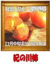 【ふるさと納税】紀ノ川柿秀品3L3.5kg(12?15玉)箱1個