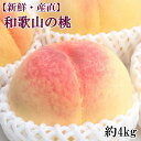 K1-63【ふるさと納税】【新鮮・産直】和歌山の桃約4kg