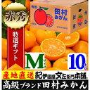 【ふるさと納税】田村みかん/特選ギフト品10kg【Mサイズ】...