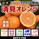【ふるさと納税】【紀州和歌山のみかん】 清見オレンジ(秀品) 10kg※着日時指定不可