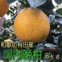 【ふるさと納税】有田育ちの河内晩柑 8kg【お届け日指定不可...