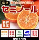 【ふるさと納税】セミノール(秀品) 5kg〔M〜3L〕和歌山...