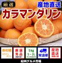 【ふるさと納税】【産地直送】カラマンダリン 約5kg(S〜2L)紀州グルメ市場