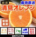 【ふるさと納税】【産地直送】清見オレンジ 約7kg(S〜2L)紀州グルメ市場