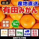 【ふるさと納税】【産地直送】有田みかん 約9kg(大玉:2L...