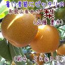 【ふるさと納税】有田の樹上成熟梨 特撰 豊水梨 約4.5kg...