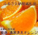 【ふるさと納税】厳選!!濃厚清見オレンジ 8kg