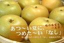 【ふるさと納税】梨(なし)幸水品種 約10kg【サイズおまか...