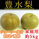 【ふるさと納税】ジューシー果汁の梨(豊水) 約5kg(ご家庭用)※8月末頃~9月中旬頃に順次発送予定