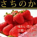 【ふるさと納税】和歌山県産いちご さちのか 約270g×4パ...
