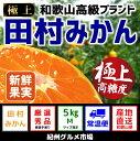 【ふるさと納税】有田みかんの最高峰【和歌...