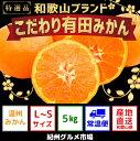 【ふるさと納税】【こだわり】有田みかん 5kg(L〜Sサイズ...