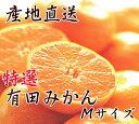 【ふるさと納税】【産地直送】特選 有田みかん Mサイズ 5k...