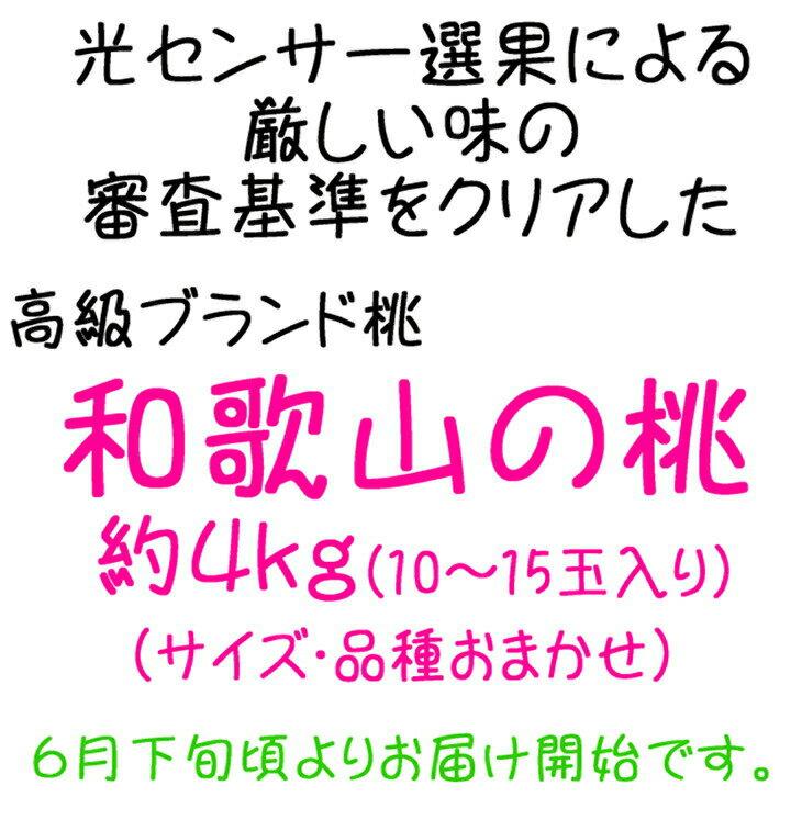 【ふるさと納税】【高級桃】和歌山の桃 約4kg...の紹介画像2