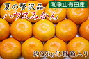 【ふるさと納税】■【夏の贅沢品】有田のハウスみかん約2.5k...