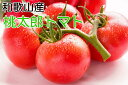 【ふるさと納税】[産直]和歌山の桃太郎トマト約4kg・M〜2...