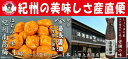 【ふるさと納税】紀州南高梅はちみつ味梅干し1キロと湯浅醤油3...