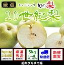 【ふるさと納税】シャリシャリ食感 旬の梨 二十世紀梨 5Kg...