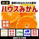 【ふるさと納税】【高級】ハウスみかん 2.5kg(L〜Mサイ...