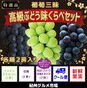 【ふるさと納税】【厳選】葡萄三昧 高級ぶどう 味くらべセット...
