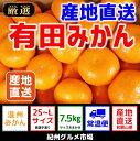 【ふるさと納税】【産地直送】有田みかん 約7.5kg(2S〜...