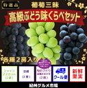 【ふるさと納税】【数量限定】葡萄三昧 高級ぶどう 味くらべセ
