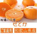 【ふるさと納税】柑橘の王様 せとか (ご家庭用)※3月上旬頃...