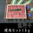 【ふるさと納税】【熊野牛】大人気焼肉セット 1kg 自家製タレ付き(mf01)