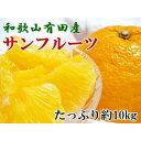 【ふるさと納税】和歌山有田産サンフルーツたっぷり10kg(M...