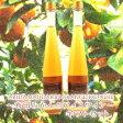 【ふるさと納税】有田みかんのアイスワイン 2本セット