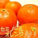 【ふるさと納税】セミノールオレンジ8kg【お届け指定日不可】