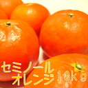 【ふるさと納税】セミノールオレンジ10kg【お届け指定日不可】