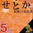 【ふるさと納税】《数量限定》柑橘の王様せとか5kg【3月上旬より順次発送】