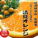 【ふるさと納税】春柑橘清見オレンジ8kg【3月上旬より順次発...