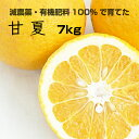 【ふるさと納税】[特別栽培] 甘夏7kg【発送時期指定可】【...
