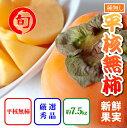 【ふるさと納税】【和歌山県産】人気の種なし柿 たっぷり7.5Kg 【旬の味覚市場】