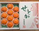 【ふるさと納税】【化粧箱】『柑橘の大トロ』 ハウスせとか 厳選 10玉入 ※2021年2月上旬〜4月上旬頃に順次発送予定