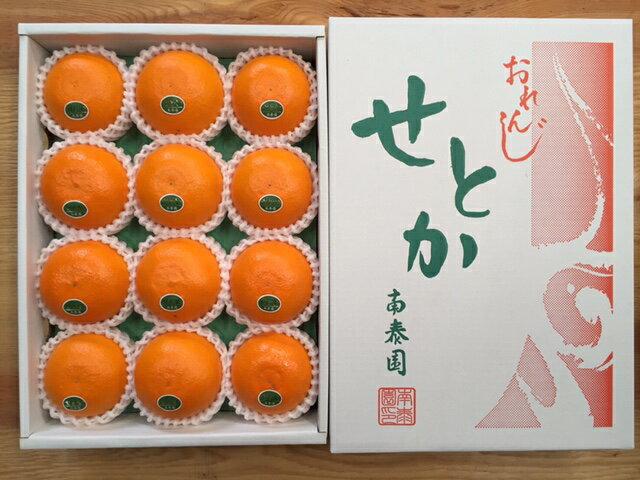 【ふるさと納税】【化粧箱】『柑橘の大トロ』 ハウスせとか 厳選 12玉入 ※2020年2月上旬〜4月上旬頃に順次発送予定
