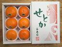 【ふるさと納税】【ハーフ化粧箱】『柑橘の大トロ』 ハウスせと...