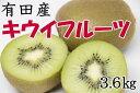 【ふるさと納税】有田産キウイフルーツ約3.6kg(サイズおまかせ)※2020年1月中旬頃〜2020年2月中旬頃に順次発送予定