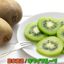 農家直送!濃厚キウイフルーツ 秀品 約2kg※2020年11月下旬〜2021年3月下旬に順次発送予定