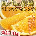 【ふるさと納税】秀品 希少な国産バレンシアオレンジ 5kg※2020年6月末〜7月中旬頃に順次発送予定