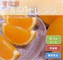 【ふるさと納税】和歌山県有田産 完熟清見オレンジ ひとつひと...