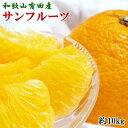 【ふるさと納税】和歌山有田産サンフルーツ10kg(M〜3Lサ...