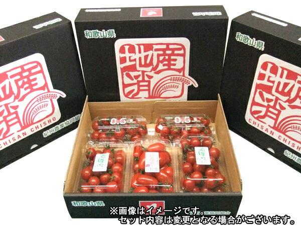 【ふるさと納税】【予約受付中】ミニトマト詰め合わせセット〜1月中旬から随時発送します!