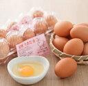 F007-C【ふるさと納税】紀州うめ卵(40個)
