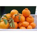 【ふるさと納税】紀州みかんのソムリエセレクト 旬の柑橘の詰め合わせ